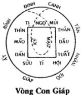 IMG.494